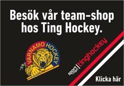Tinghockey