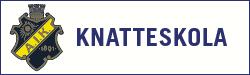 AIK Knatteskola 2021