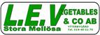 L.E.V.