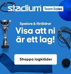 Stadium teamsales