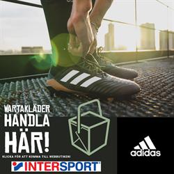Intersport Team Väst